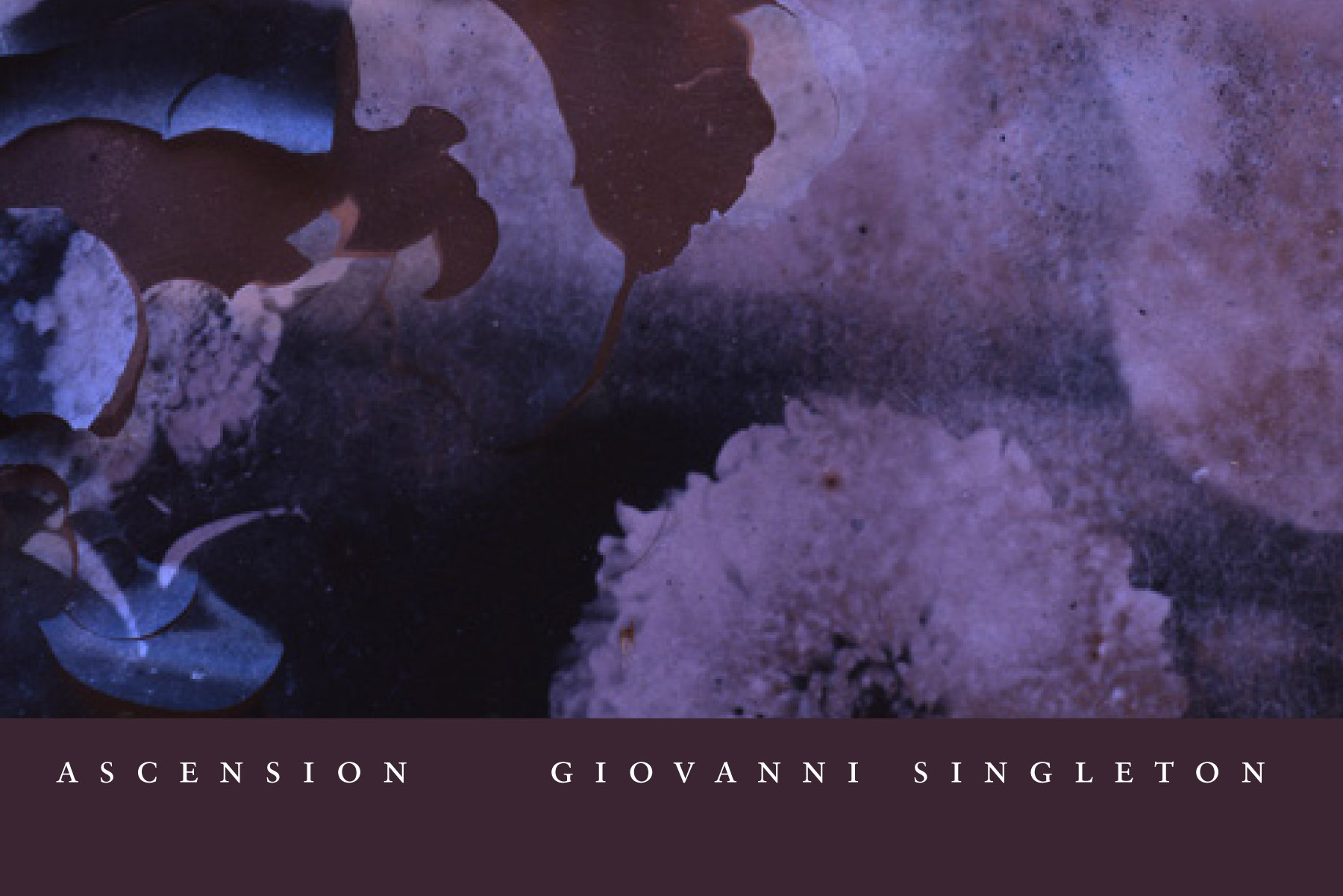 Ascension giovanni singletonWinner of the California Book Award