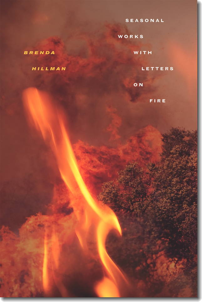 Brenda Hillman: April 26, 2014
