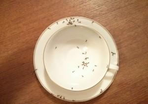 ant teacup-2
