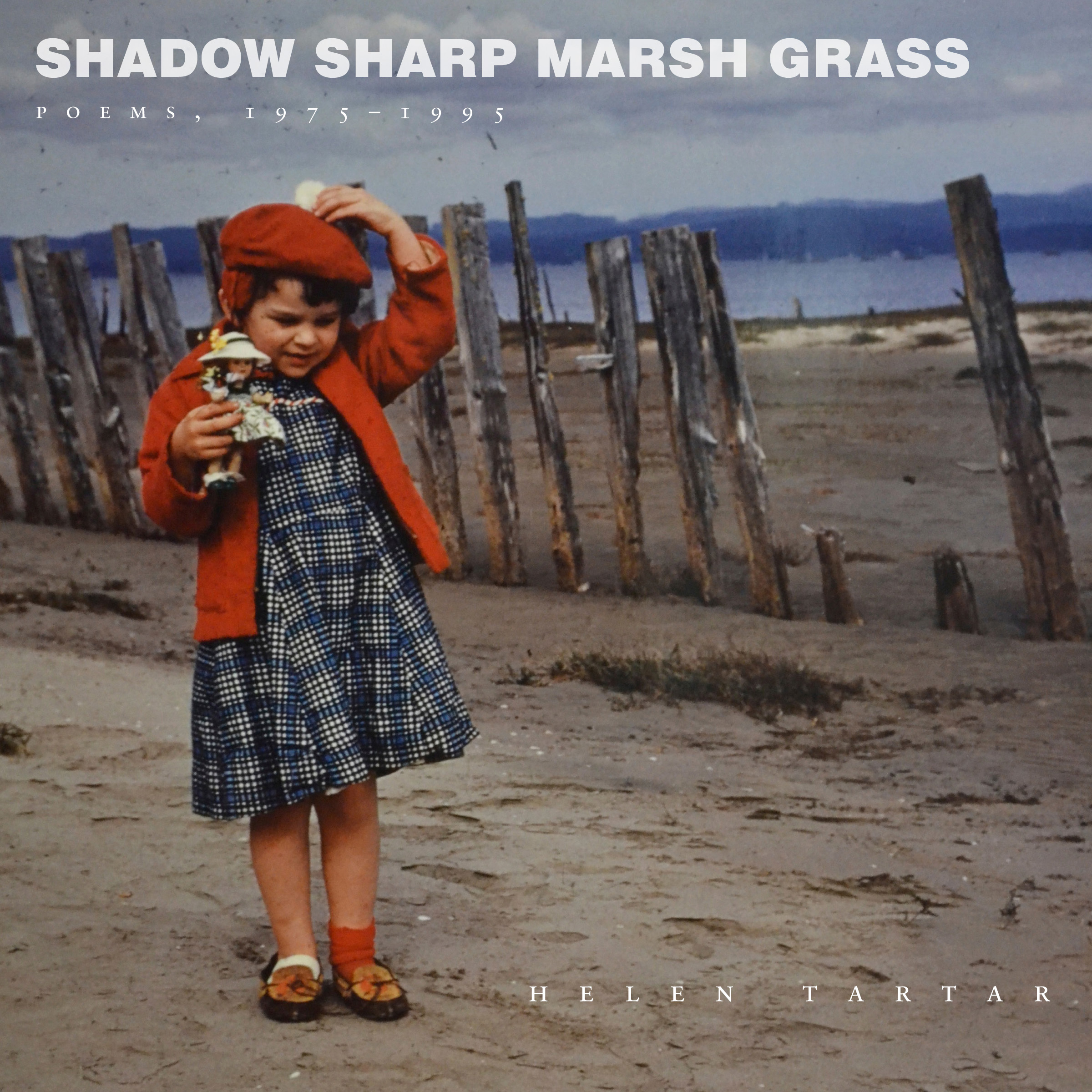 Shadow Sharp Marsh GrassHelen Tartar