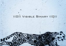 Visible Binary Launch Party, April 22, 2016