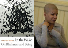 Christina Sharpe, In the Wake, talk (4/5) and reading group (4 sessions)